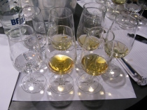 Clement and Rhum JM tasting samples