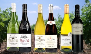 The beautiful wines of Rhone and Languedoc